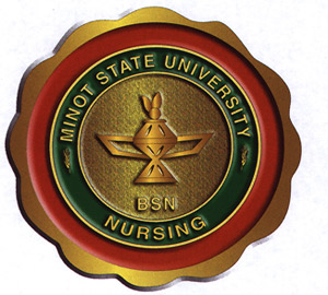 Msu The Minot State University Nursing Pin